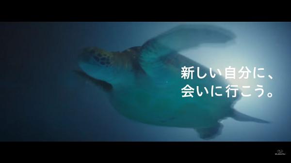 SUBARUフォレスター新CM「ナイトダイビング 篇」⑧.png
